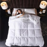 3d Luxury Goose Down Duvet Quilted Quilt King Queen Full Size Comforter Winter Thick Blanket Solid Color Suit All Season