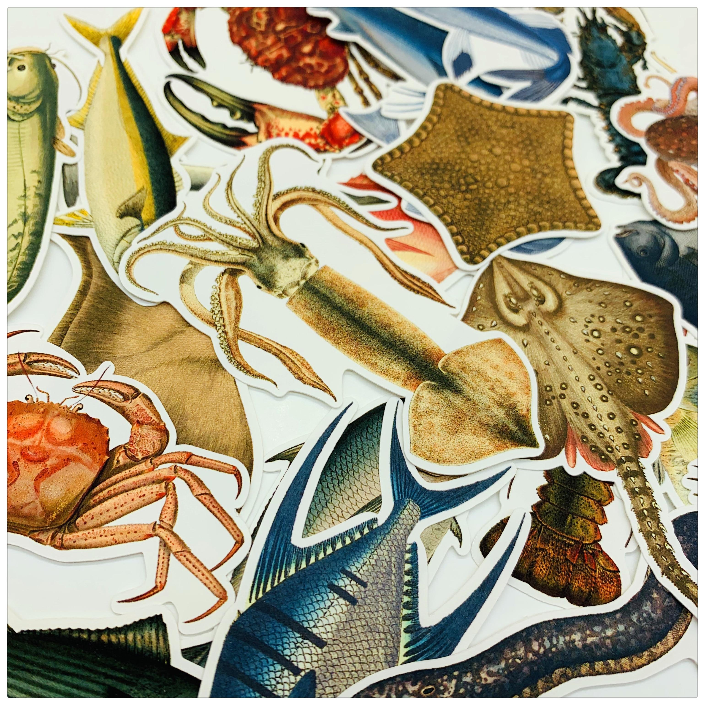 24pcs Marine Life\Fish\shark\starfish\squid\crab\Octopus\lobster Retro Color Stickers