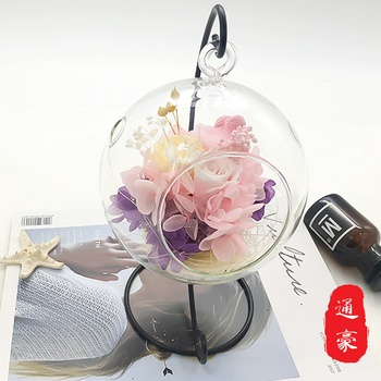 Eternal Christmas Holiday Gift Glass Micro Greenhouse Creative Micro Landscape Bottle Eternal Gift
