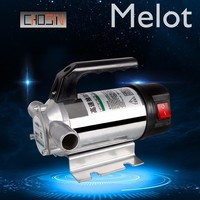 50l/min 12v/24v/220v Small Auto Refueling Pump 12 V Electric Automatic Fuel Transfer Pump For Pumping Oil/diesel/kerosene/water