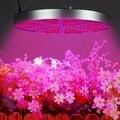 50 Вт полный спектр светодиодный Grow светильник Панель лампа для выращивания гидропоники комнатное растение цветок