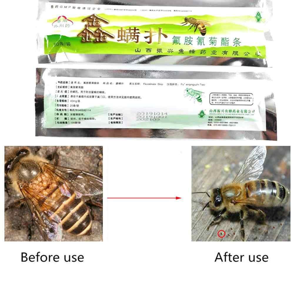 20 Pcs Fluvalinate Varroa Strip Lebah Pszczoły Picada De Abelhas Obat Abeille Serangga Medecine Apiculture Sengatan Tungau Lebah