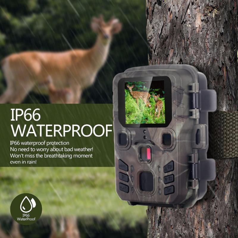 display lcd 12mp 1080 p hd trail 04