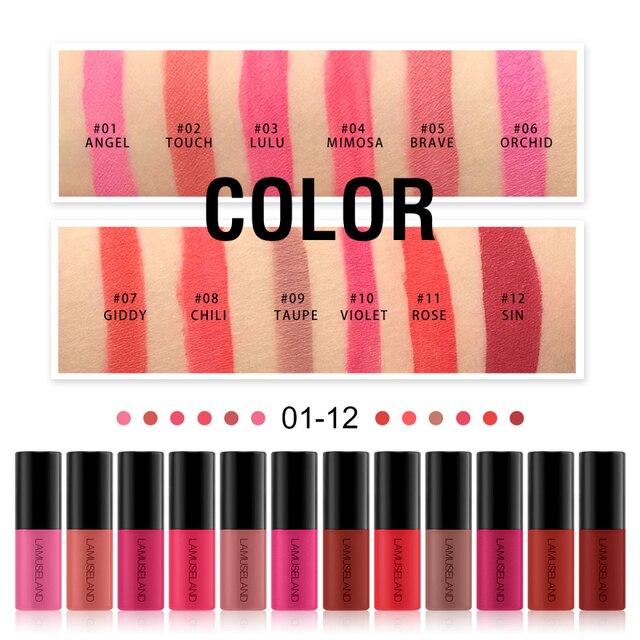 12 컬러 립글로스 샘플 매트 리퀴드 립스틱 소녀 소프트 미스트 매트 파티 TSLM2