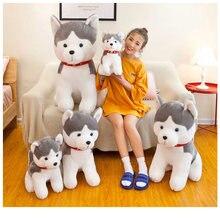 Хаски собака моделирование кукла Набивная игрушка плюшевые игрушки