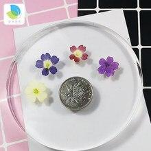 Verbena mały prawdziwy suszony kwiat suche rośliny do świecy epoksydowej wisiorek z żywicy naszyjnik tworzenia biżuterii Craft DIY Accessori