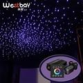 Fiber Optic Lichtquelle 32W RGBW Doppel Port Licht Fahrer Touch Panel Controller Sterne Decke Kino Decor Starry Sky