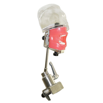 Nissin Dental simulator manikin phantom head Dental phantom head model with new style bench mount for education