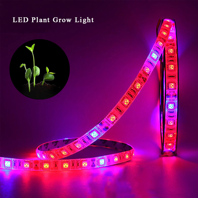LED Grow Light For Greenhouse Hydroponic Plant Phyto 5050 Growing Lamp Growth Lt