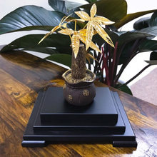 Asklove Feng Shui Fortune Tree GOLD Bonsai (China)