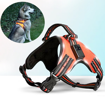 Rechargeable LED Harness for Pets Dog Tailup Nylon Led Flashing Light Dog Harness Collar Pet Safety Leash Belt Dog Accessories 1