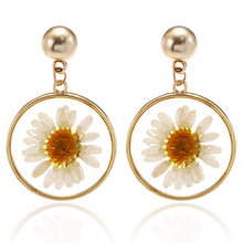 Cute Daisy Natural Dried Flower Resin Earrings 2019 New Korean Fashion Transparent Acrylic Dangle Hanging Earring Jewelry(China)