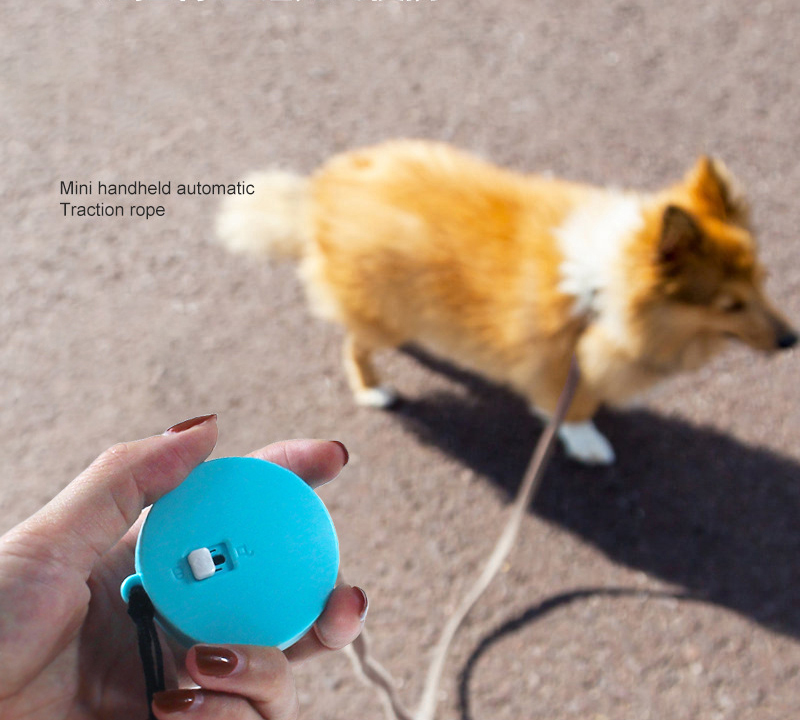Nylon-Rope-Leash-for-Outdoor-Any-Dog-breed
