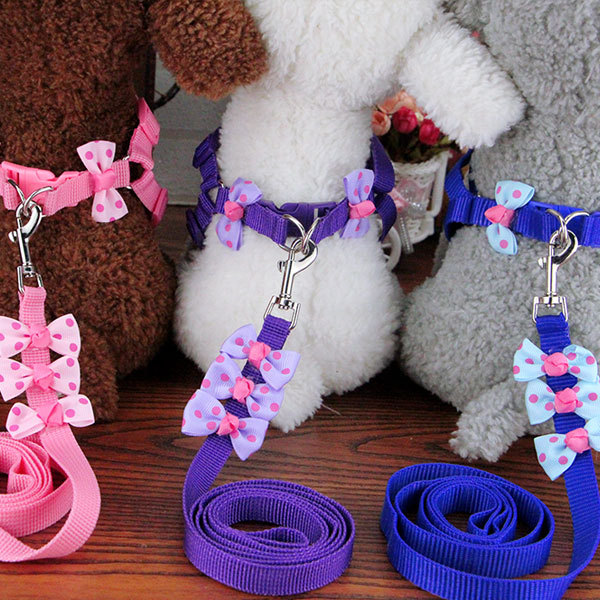 VIP Dog Chain Lanyard Small Medium-sized Dog Cat Teddy Puppy Bichon Dog Traction Chest Universal Pet Dog Not
