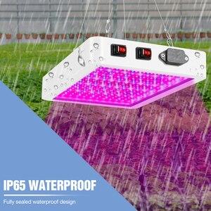 Image 4 - Pełne spektrum 300W 500W oświetlenie LED do uprawy 220V lampa fito dla rośliny doniczkowe i kwiat szklarnia Box 110V ue US UK wtyczka
