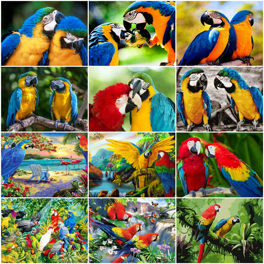 HUACAN Painting By Number Parrot Drawing On Canvas HandPainted Paint Art Gift DIY Coloring By Number Animal Kits Home Decor