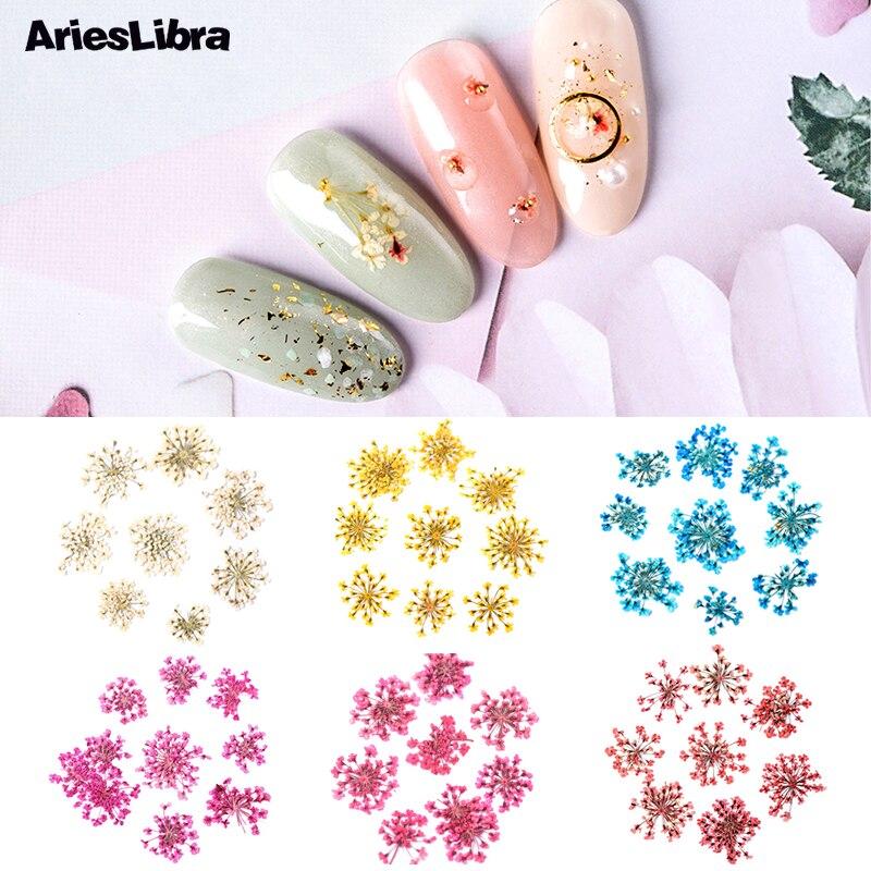 AriesLibra 10Pcs Star Cluster Bunga 3D Nail Art Bunga Kering Nyata Diawetkan Bunga Dekorasi Manikur Kuku Decal Aksesoris