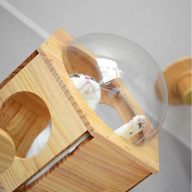 sextavada espaço cápsula gato parede jogar casa