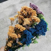 80 그램/몫, 자연 영원한 보존 된 Mi 꽃 Bouque, 결혼식 파티 홈 장식 액세서리에 대 한 꽃을 표시, 꽃을 정렬