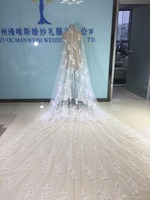 Real Images Bridal Veils Cathedral Length With Free Comb 5 M Long White Ivory Lace Applique Beads Crystal Wedding Veils