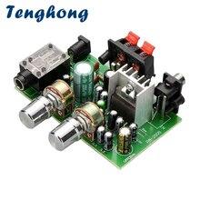 Tenghong miniamplificador de sonido, 20W + 20W, 2,0 canales de potencia, DC12V Amplificador de Audio, micrófono, placa amplificadora ESTÉREO