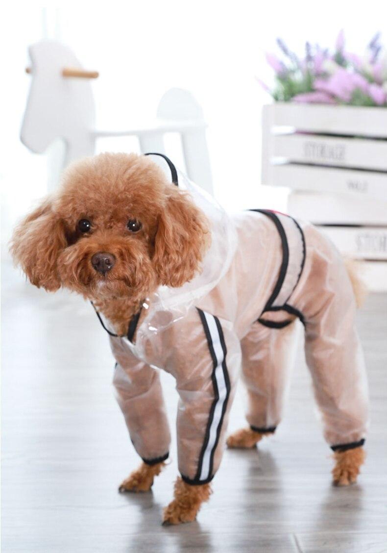 Köpek Yağmurluk köpek mont