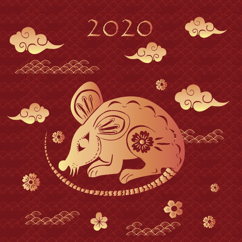 Leowefowa 12x8ft Happy Chinese New Year 2020 Year of The Rat Backdrop for Photography Vinyl Chinese Style Mouse Paper-Cut Shape 2020 Numbers Red Background New Year Party Decor Child Adult Shoot