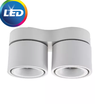 Dimmable Surface Mounted LED COB Downlight14W/20W Rotating LED Spot Light Ceiling Lamp with LED Driver AC110V/220V