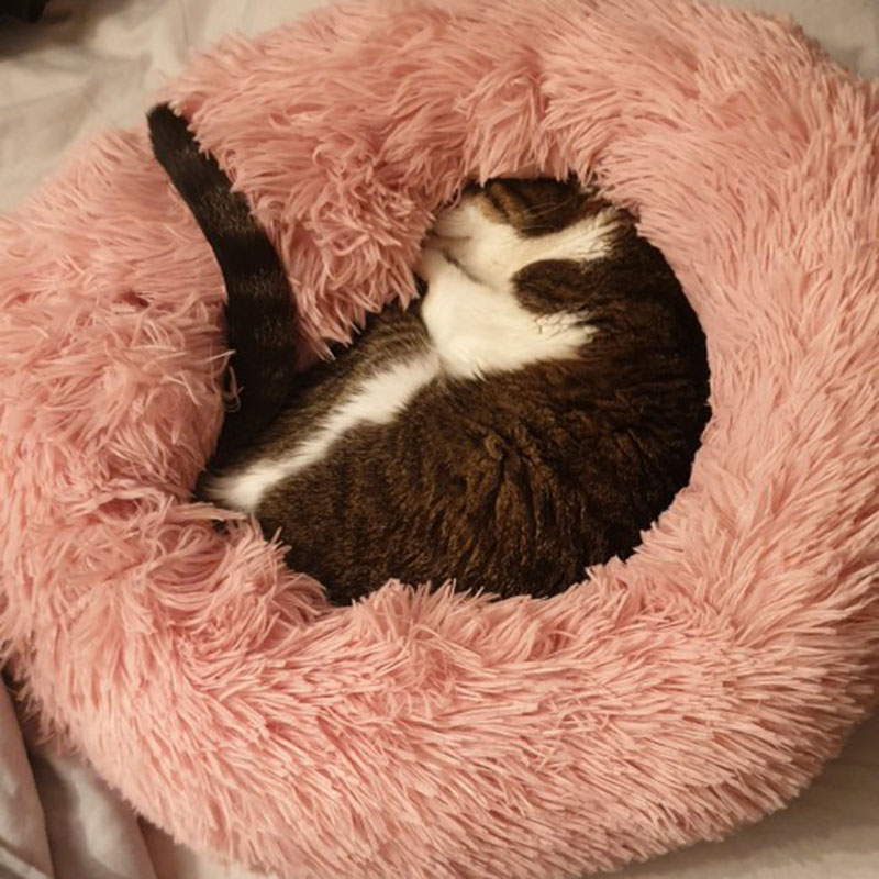 Round Plush Cat Bed Soft Warm Cat House Winter Sleeping Pet Bed For Small Cat Dog Puppy Waterproof Kennel Pet Cushion Mat