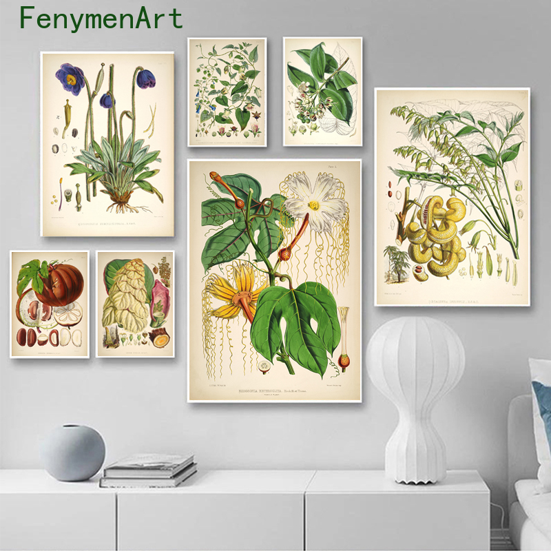 Botanical Flower Study Canvas Painting Vintage Wild Plant Posters Prints Nordic Wall Art Pictures Living Room Home Decor