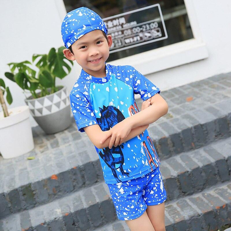 2018 New Style Hot Springs Children's Swimwear Boy's Small Children's Split Type Cartoon Water Park Children's Swimwear Set