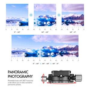 Image 5 - Andoer PAN 03 بانورامية ترايبود رئيس الإفراج السريع لوحة المشبك محول Arca السويسري القياسية سبائك الألومنيوم