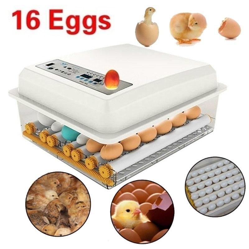 Dreamburgh Hatchery-Incubator Turner Brooder-Machine Egg-Hatchers Bird Farm Quail Chicken