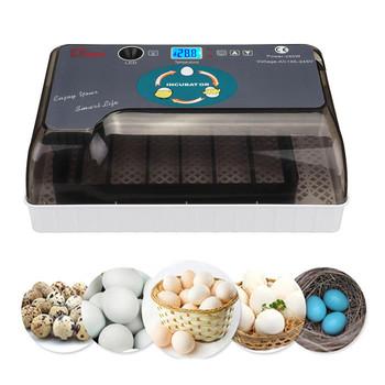 Najnowszy najlepsza maszyna wylęgarnia gospodarstwa 12Egg Hatchers tanie PriceChicken automatyczny inkubator jaj chiny na sprzedaż przepiórki BrooderHHD tanie i dobre opinie HAIMAITONG CN (pochodzenie) Zwierzęta gospodarskie kura Z tworzywa sztucznego YZ-12A Automatic Egg Incubator Chicken Duck Goose Quail Eggs