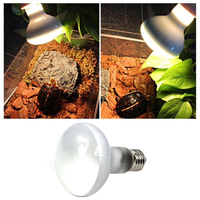 Mini Pet Heating Lamp UV Day Night Amphibious Turtle Snake Reptile Heat Light