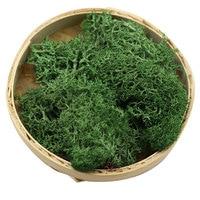 Wand Moos Gras Künstliche Grüne Pflanze Garten Dekoration Mini Zubehör Hause Wohnzimmer Dekorative Unsterblich Gefälschte Blume DIY