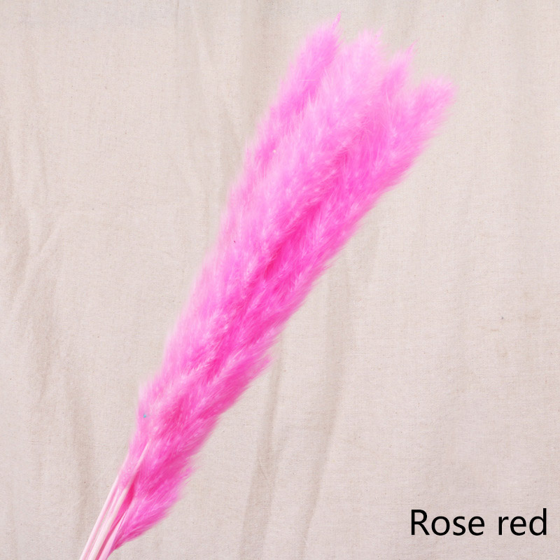 7pcs-rose red