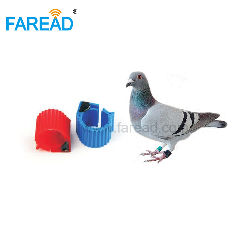 X100pcs 134.2KHz Hitag-S256 FDX-B ABS 9mm RFID Racing Pigeon Electronic Foot Ring For Animal Bird Tracking