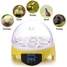 Mini 7 incubadora de ovos incubadora aves de capoeira chocadeira temperatura digital incubadora do ovo incubadora incubadora galinha pato pássaro pombo