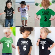 Of Course I Know Everything I'm 3/4/5/6 Kids Funny Birthday T Shirt Toddler Boys Girls Short Sleeve Tshirt Children Casual Tops