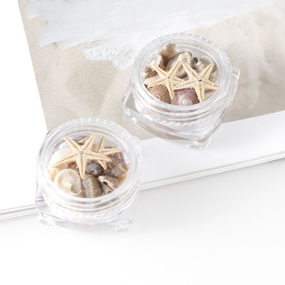 1/2/5 Box Natural Mini Conch Shells Starfish Sea Beach Ornaments Manicure Tools For DIY Epoxy Mold Craft Accessories