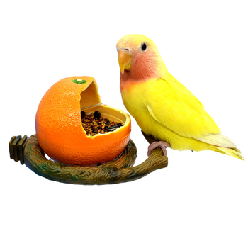Fruit Deco Parrot Feeding Bowl  1