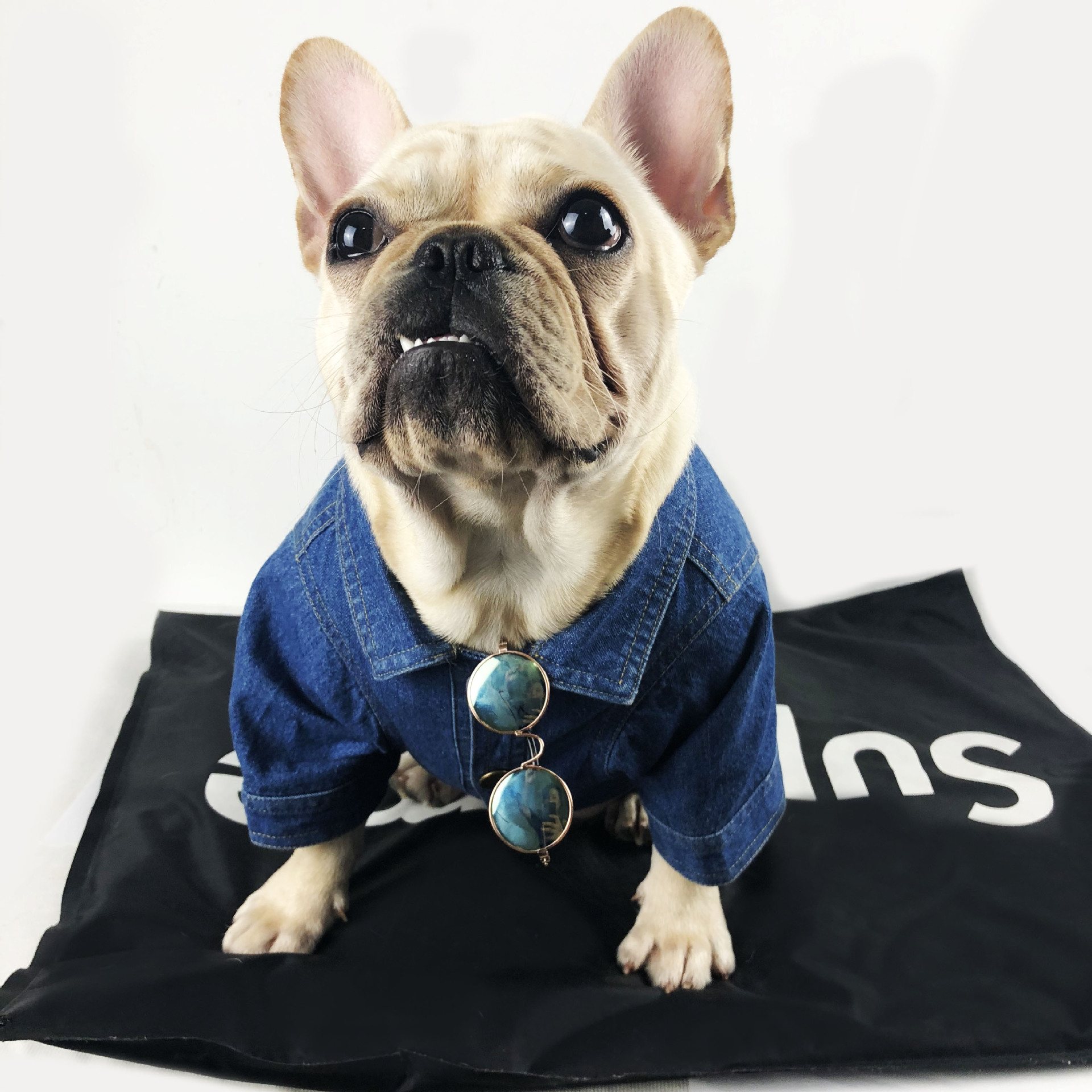 Fashion Dog Denim Jacket For Small Dogs French Bulldog Jeans Coat Printed Clothes For Chihuahua Pug Puppy Pet Luxury Clothes Dog Coats Jackets Aliexpress
