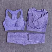 3pcsSetPurple - Women Seamless Yoga Set Fitness Sports Suits