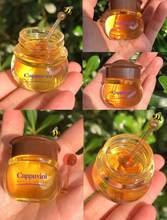 Hidratante mel lábio óleo unissex nutritivo anti-rugas cuidados com os lábios anti-rachamento suave lábio linhas finas dormir máscara labial tslm2