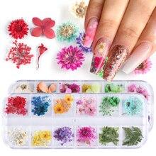 Mezcla de flores secas uñas decoraciones de natural, floral pegatinas con forma de hoja 3D diseños de uñas de arte polaco manicura accesorios TRF01-10