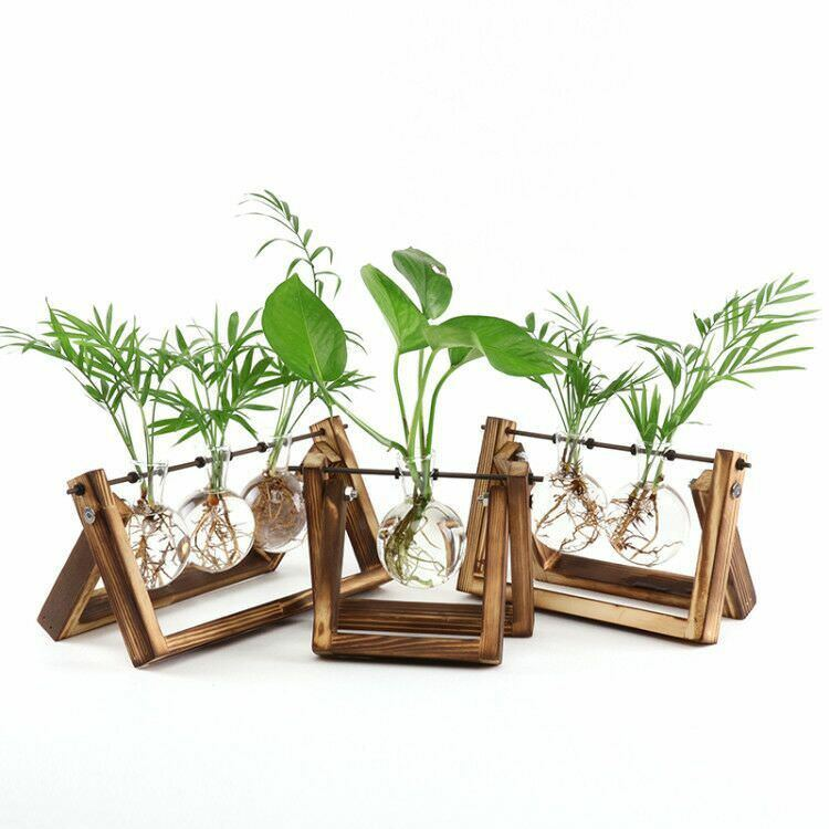 Creative terrarium hydroponic plant transparent vase wooden frame vase decoratio glass Table plant Bonsai decoration vase