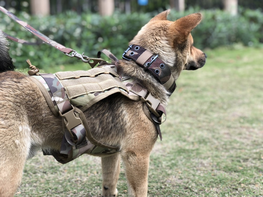 Dog - Military Tactical Dog Harness German Shepherd Pet Dog Vest Harness For Small Large Dogs