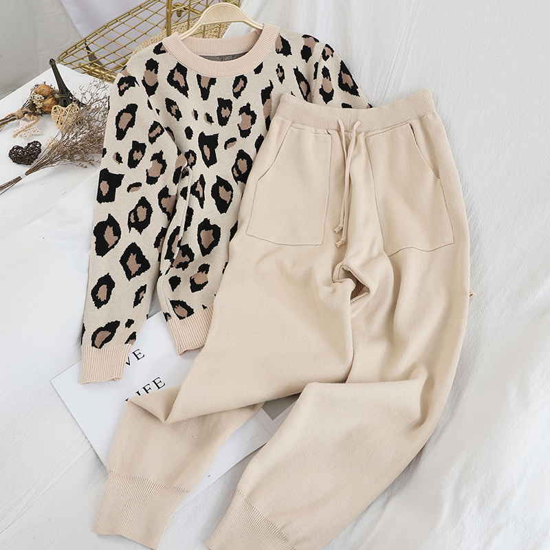 Eoeth Women Fashion Long Sleeve Leopard Printed T-Shirts Casual Simple O-Neck Shirt Loose Top Blouse Pullover Tracksuits
