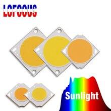 10W 20W 30W 50W 100W 성장 COB LED 칩 태양의 전체 스펙트럼 실내 수경 식물에 대 한 DIY 햇빛 식물 성장